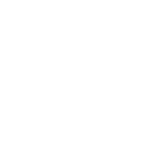 Puidenarviointi ja hoitosuunnitelmat ikoni